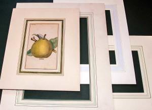 various mat frames